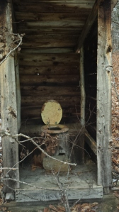 An abandoned outhouse in the woods - No I did not use it.